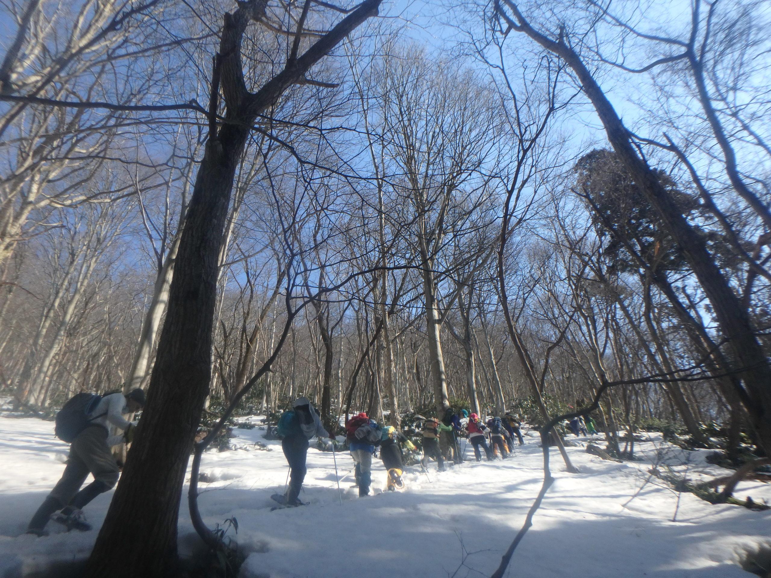 姥杉から先、舘岩直下が急斜面
